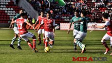 Mineros8
