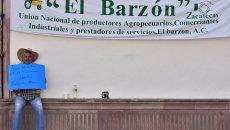Barzon1