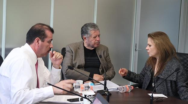 Los Comisionados durante la Sesión Ordinaria de Pleno