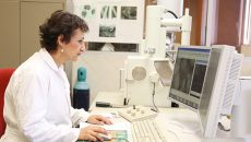 Doctora Leticia Myriam Torres Guerra, de la Universidad Autónoma de Nuevo León (UANL), integrante de la Academia Mexicana de Ciencias, ganadora del Premio Nacional de Ciencias 2018. (Foto: Tomada de: http://vidauniversitaria.uanl.mx/.)