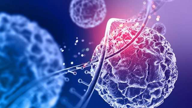 Los virus han estado en contacto permanente con todos los organismos durante la evolución. Cuando se determinó la secuencia del genoma humano en 2001, se encontró de manera sorprendente que 8% del genoma está formado por retrovirus endógenos, una especie de virus fosilizado, que han tenido un papel importante en la evolución humana. (Foto: Shutterstock.)