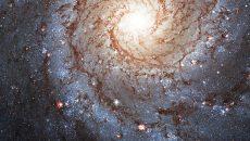 Galaxia espiral NGC 628, ubicada en la constelación de Piscis y localizada a una distancia de alrededor de 29 millones de años luz de la Vía Láctea. (Foto: Shutterstock.)