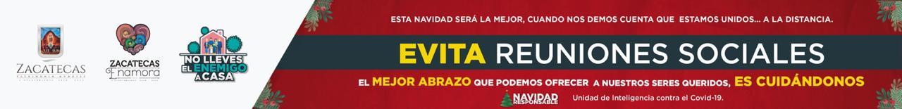 https://municipio.capitaldezacatecas.gob.mx/